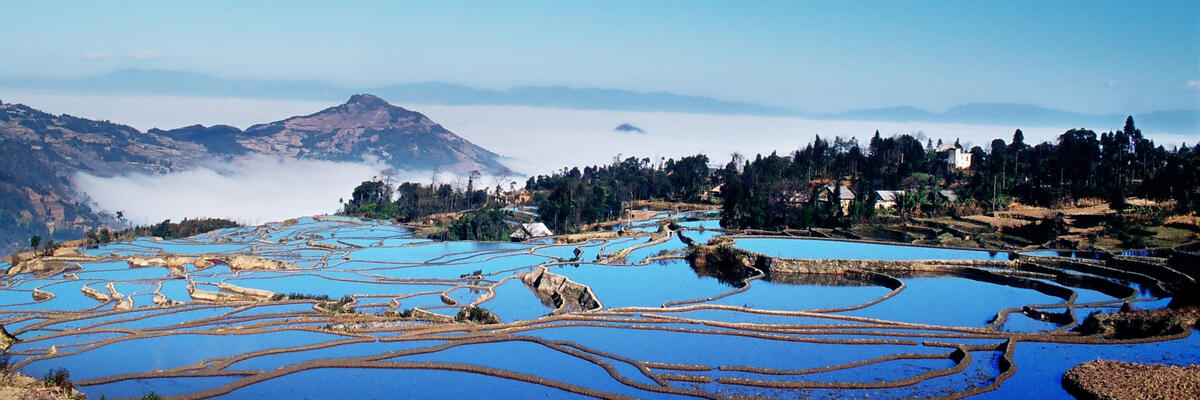 The lovely blue of the sky is reflected in the rice terraces