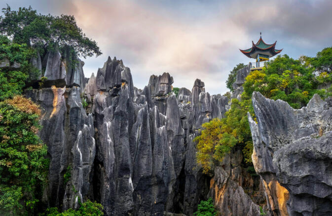 The winning image for week 8 is Stone Forest Wall 2 by GoKunming user 123ktime
