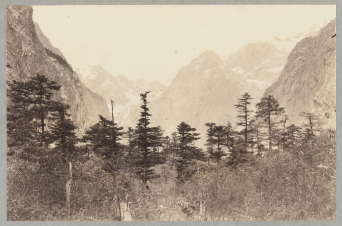 Mountains with conifers May 25, 1922