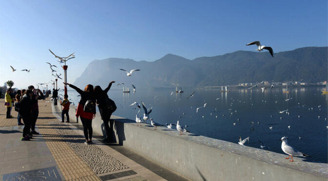 Siberian gull season on Haigeng Dam before the renovation