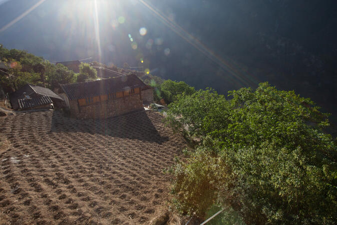 Fields front a guesthouse in Tiger Leaping Gorge (image credit: Yereth Jansen)