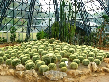 Cactus room in World Horticultural Expo Gardens