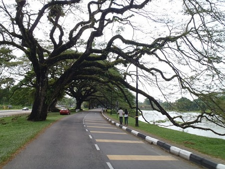 Cycling in the park near Taiping