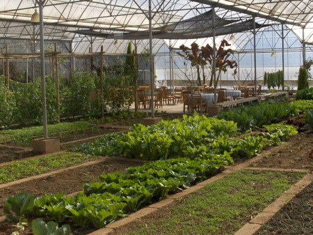 The greenhouse at Haobao Valley
