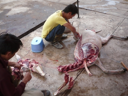 Donkey butchering in Jiangchuan