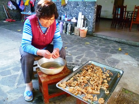 A Tengchong woman washing tianma