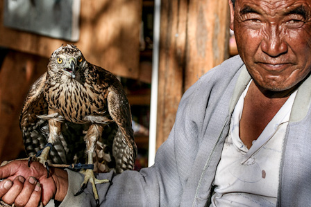 Falcons are not uncommon pets in Lijiang (photo: Keith Lyons)