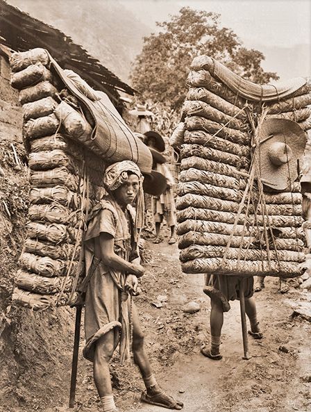 Porters transporting more than their weight in tea along the Tea Horse Road
