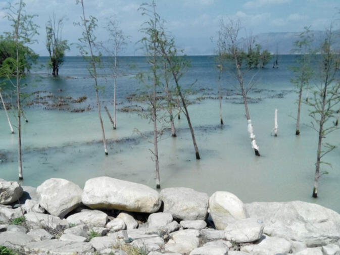 Untreated wastewater is currently clouding the waters of Erhai Lake