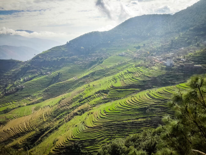 Terraced fields on the slopes of the Ailao Mountain Range