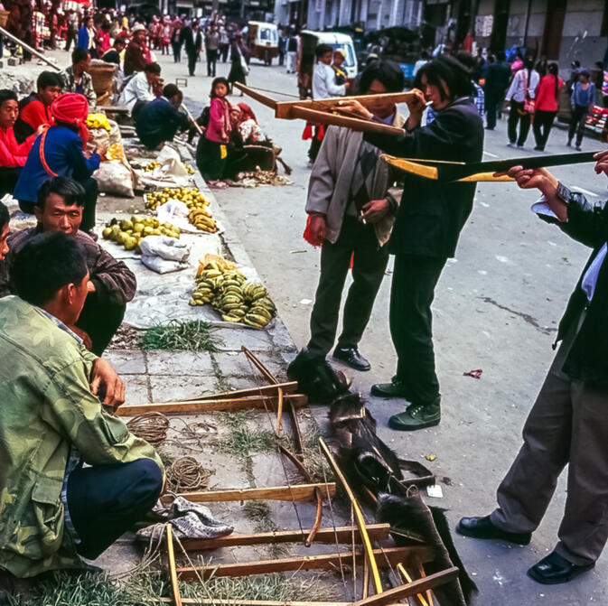 Hunters examining crossbows in Fugong