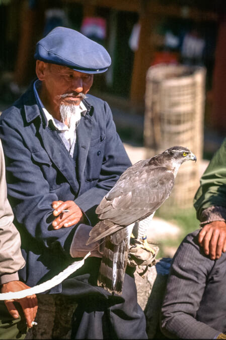 Naxi gentleman with his hawk