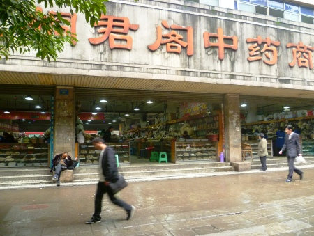The Tongjunge Chinese Medicine Market on Jiefang Xi Lu