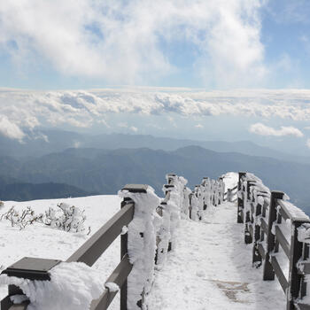 Snowfall blankets the boardwalk path near the summit of Yunnan's Jiaozi Snow Mountain