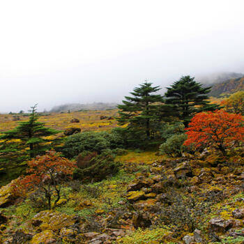 Jiaozi Snow Mountain in Yunnan province sees the arrival of autumn