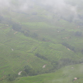 Fog obscures the Hani Rice Terraces near Bada (image credit: Chiara Ferraris)