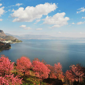 Autumn colors grace the shores of Yunnan's Fuxian Lake