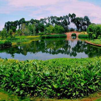 The wetland park on the northern shore of Fuxian Lake is manmade, created to act as a buffer against pollution