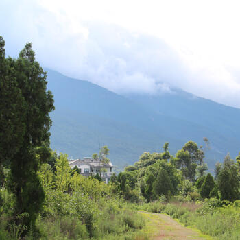 A walking path at the foot of the Cangshan Mountains in Dali