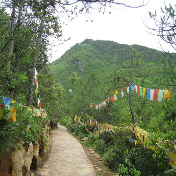 Trail to Wenbi Mountain peak near upper compound of Wenfeng Temple