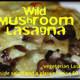 Rainy Season is Mushroom Season
