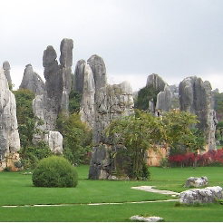 Stone Forest Tickets