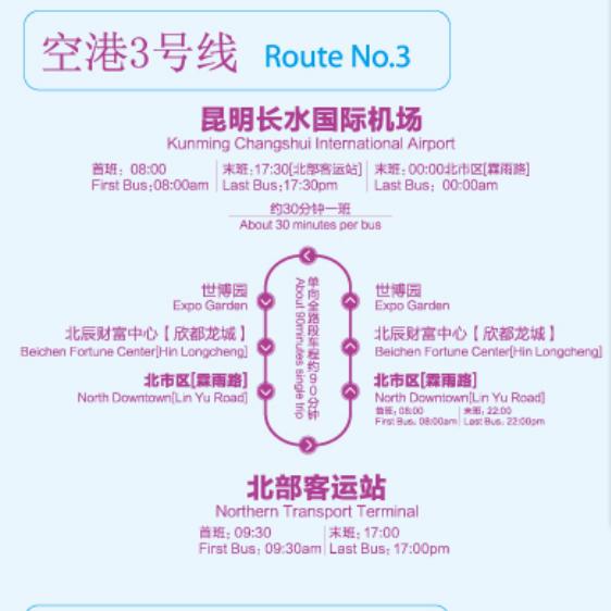 Airport Express Bus 3 (Linyu Lu)