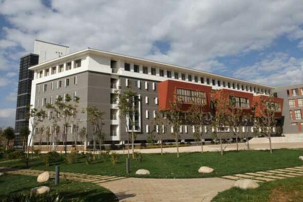 Yunnan Normal University College of the Arts