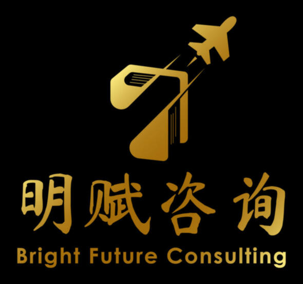 Bright Future Consulting