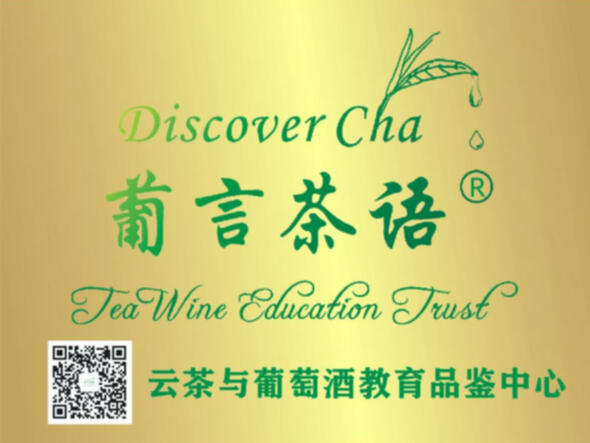 Discover 茶 Tea Studio